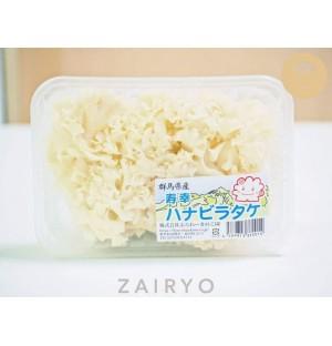 Hanabiratake Mushroom / ハナビラタケ