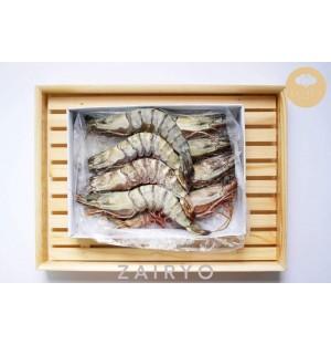 Kuruma Ebi (Tiger Prawn) / 車海老 (Comes in 2 sizes)